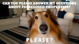 Frequently Asked Questions (FAQ) About Foreclosed Properties