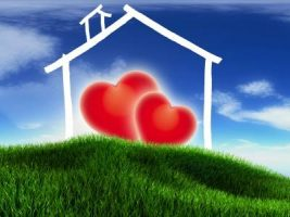love and legal problems related to real estate