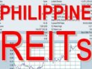 Amendments to the IRR of the REIT Act of 2009 proposed by the BIR