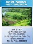 Public Sealed Bidding for PNB Foreclosed Properties In San Carlos City, Negros Occidental Slated On February 18, 2015