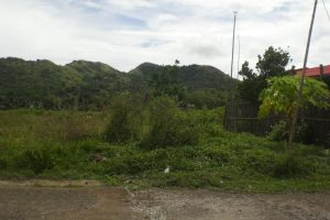Front View-Foreclosed Vacant Lot For Sale In Roxas City, Capiz (AN-0045187)