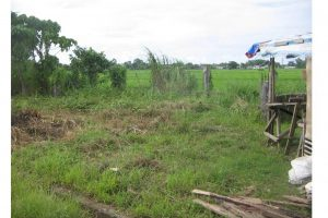 Front View-Foreclosed Vacant Lot For Sale In Daet, Camarines Norte (AN-0160434)