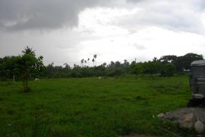 Front View-Foreclosed Vacant Lot For Sale In Candelaria, Quezon Province (AN-0283146)