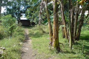 Front View-Foreclosed Vacant Lot For Sale In Candelaria, Quezon Province (AN-0554216)