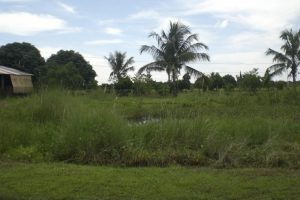 Front View-Foreclosed Vacant Lot For Sale In Arayat, Pampanga (AN-0580931)