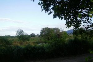 Front View-Foreclosed Vacant Lot For Sale In Umingan, Pangasinan (AN-0587895)