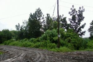 Front View-Foreclosed Vacant Lot For Sale In Bayambang, Pangasinan (AN-0749963)