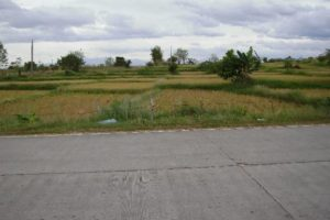 Front View-Foreclosed Vacant Lot For Sale In Umingan, Pangasinan (AN-1323747)