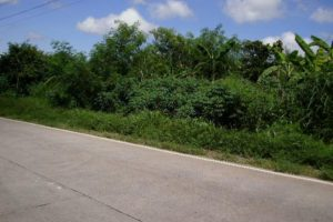 Front View-Foreclosed Vacant Lot For Sale In Umingan, Pangasinan (AN-1323761)
