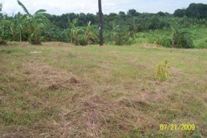 Front View-Foreclosed Vacant Lot For Sale In Mariveles, Bataan (AN-2053833)