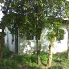 Front View-Foreclosed House And Lot For Sale In San Mateo, Rizal (AN-2228802)
