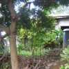 Front View-Foreclosed House And Lot For Sale In San Mateo, Rizal (AN-2369345)