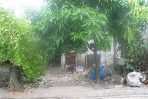 Front View-Foreclosed House And Lot For Sale In San Mateo, Rizal (AN-2369431)